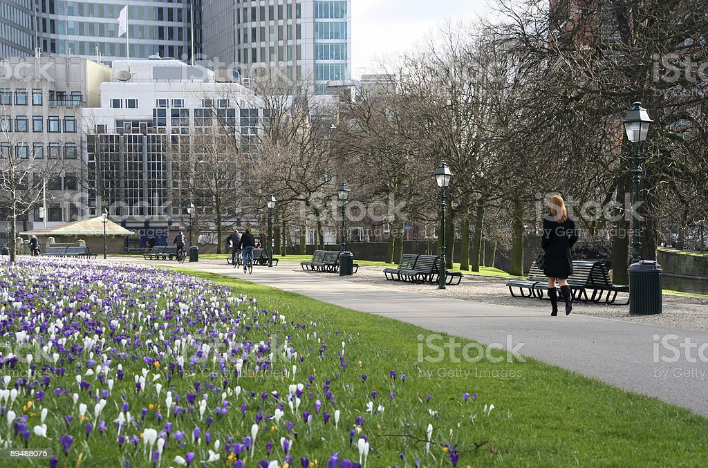 Urban Spring at Lunch Time royalty-free stock photo