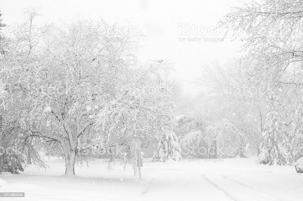 Urban Street in a White-Out Blizzard royalty-free stock photo