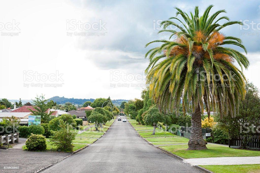 Urban street in Rotorua, New Zealand stock photo