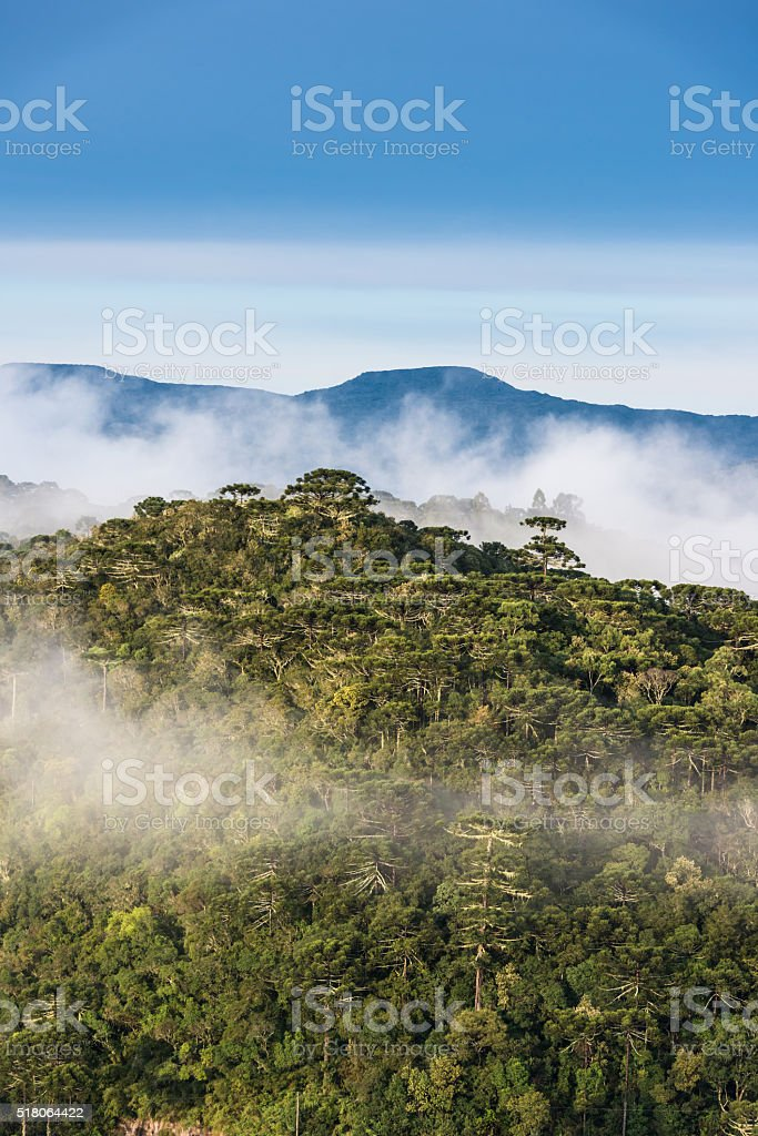 Urubici - Santa Catarina, Brazil stock photo
