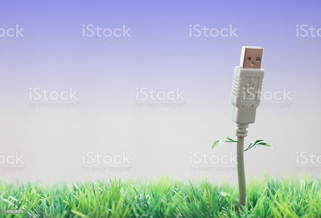 usb cable flower with leaves royalty-free stock photo