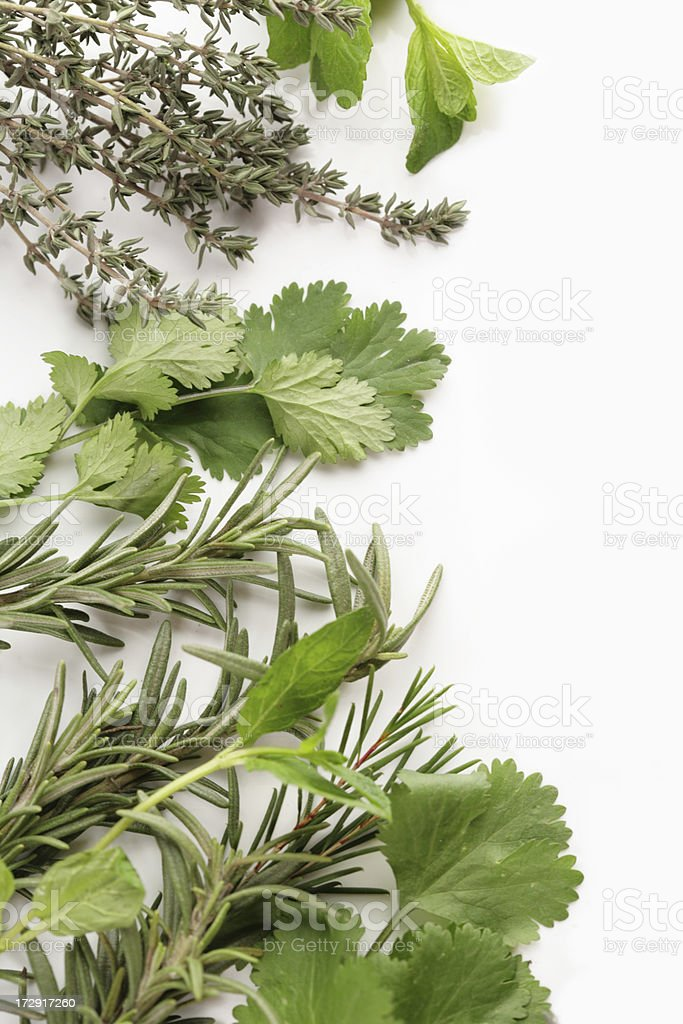 useful herbs for kitchen royalty-free stock photo