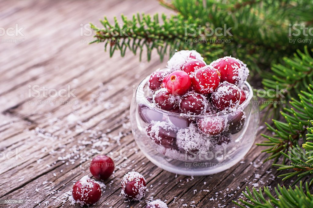 Useful natural sweets of ripe cranberries and sweet coconut stock photo