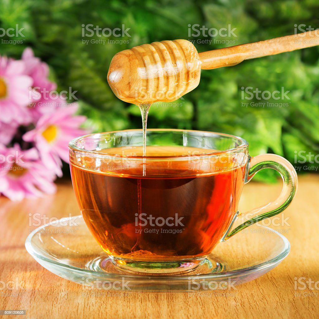 Useful tea with honey on a background of nature stock photo