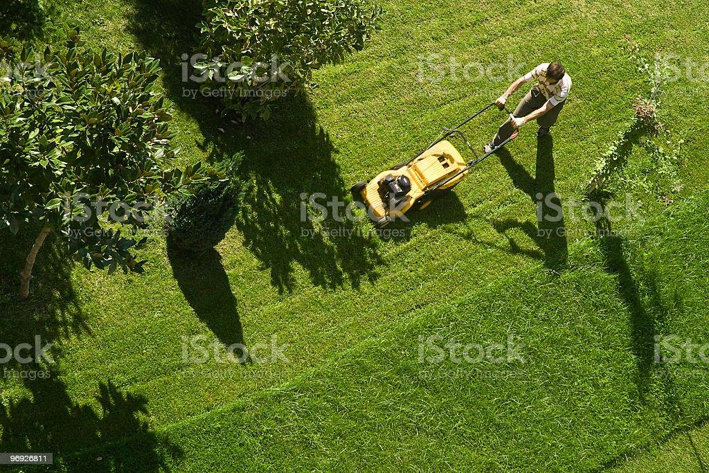 Using lawn mower stock photo