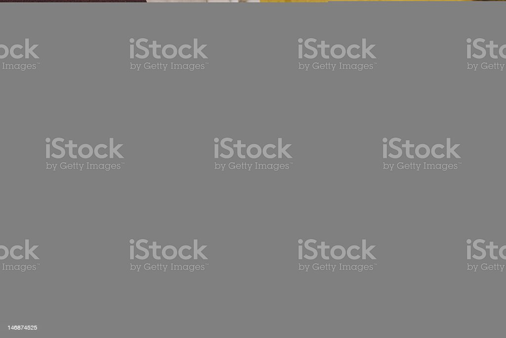 Using PDA royalty-free stock photo
