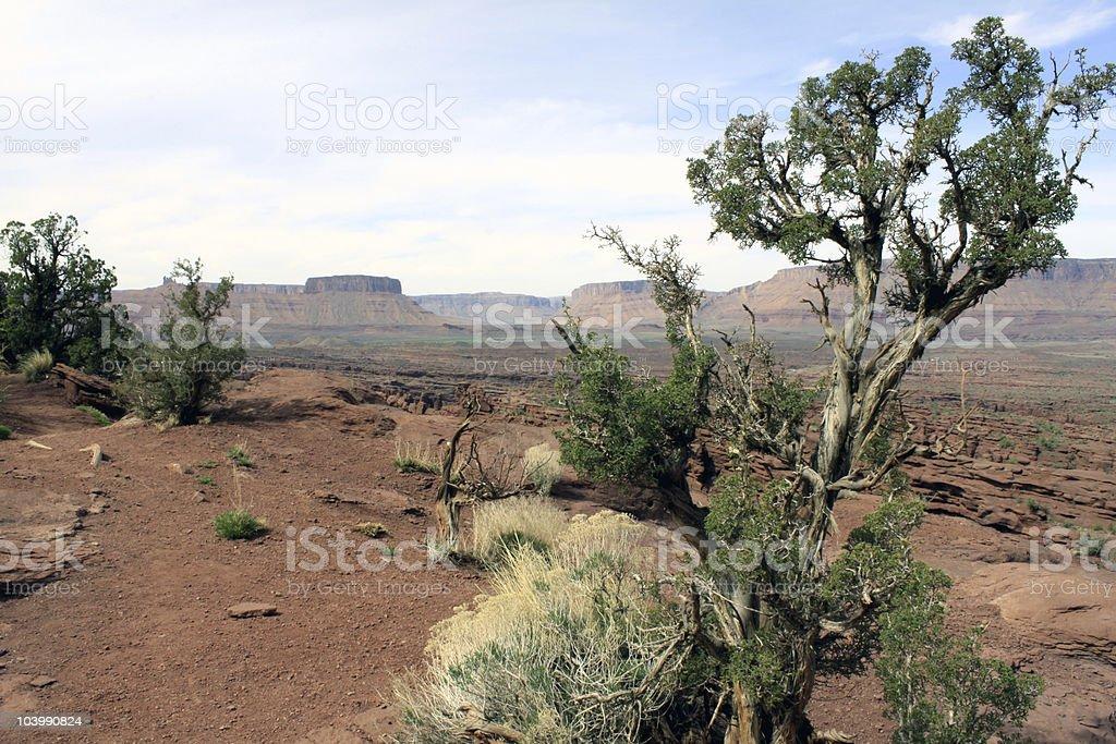 Utah desert scene stock photo
