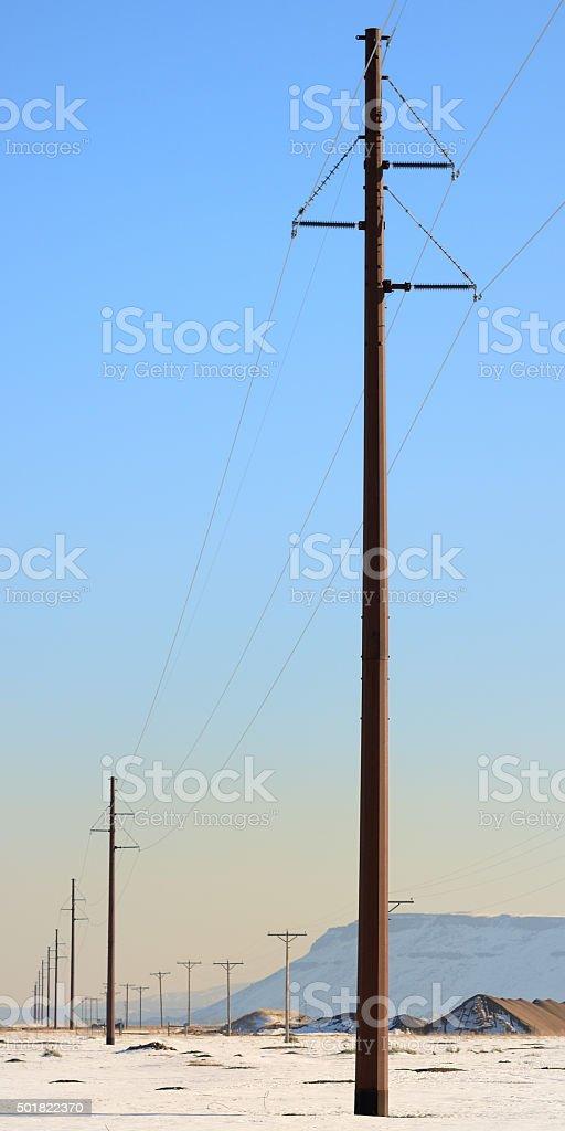 Utility Poles stock photo