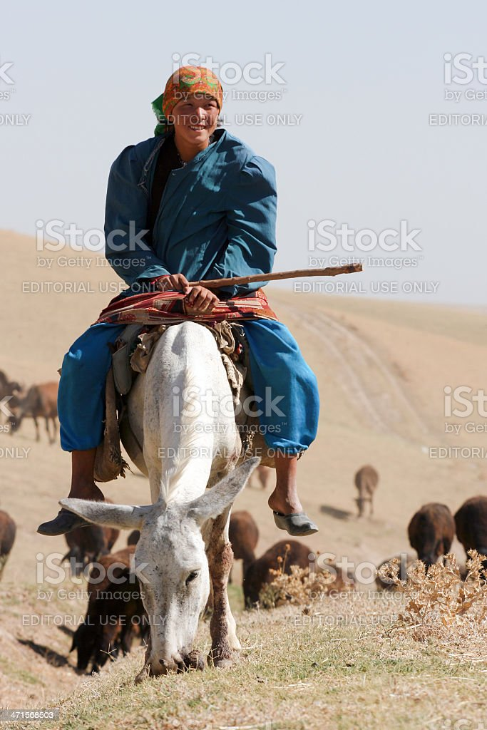 Uzbek rider stock photo