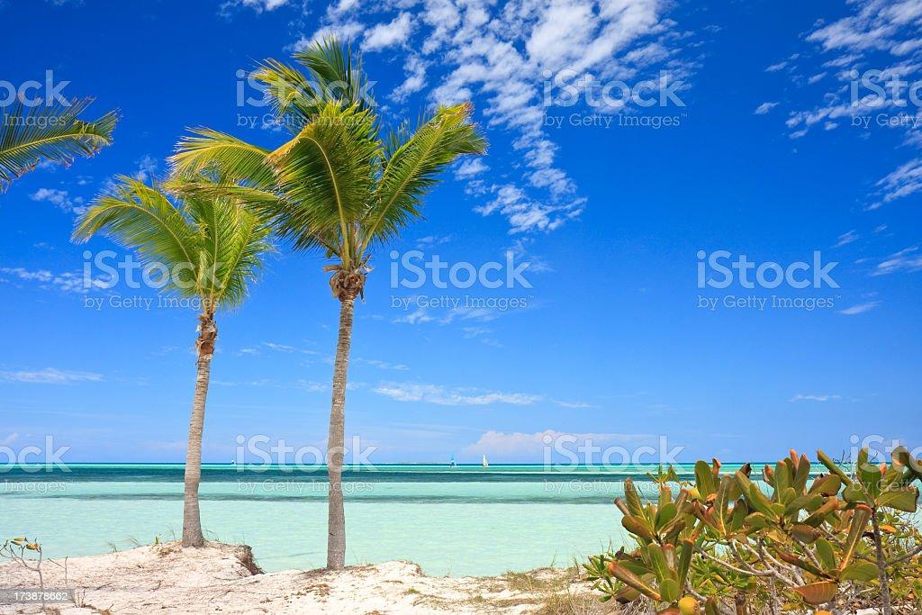 Vacation background stock photo