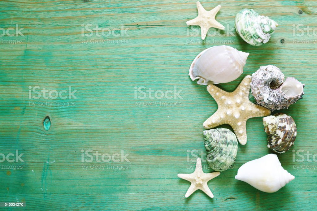 vacation concept - starfish and seashells on a wooden background stock photo