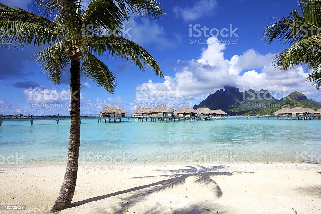 Vacation in Paradise stock photo