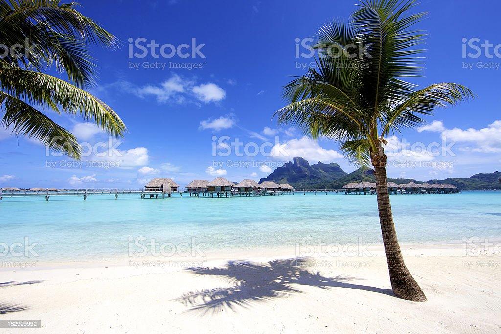 Vacation in Tahiti stock photo