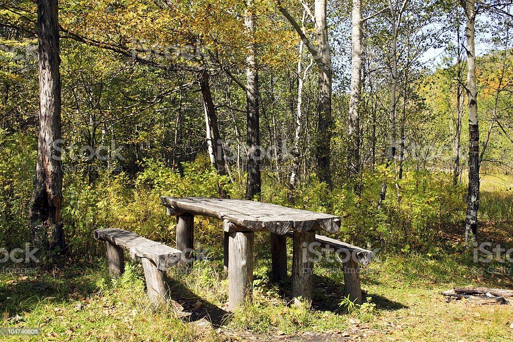 Vacation spot in autumn wood stock photo