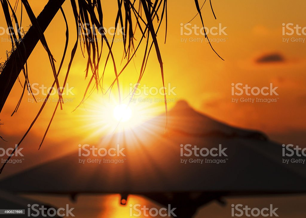 Vacation time: Amazing dawn with parasol and palms stock photo