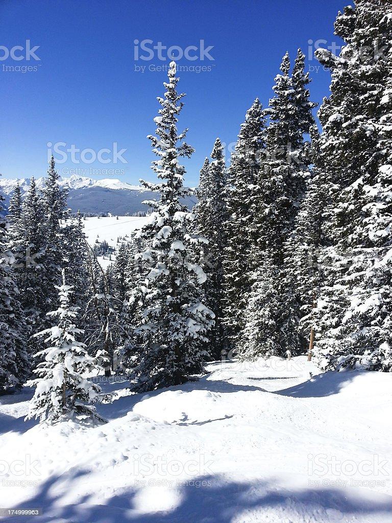 Vail ski resort in Colorado royalty-free stock photo
