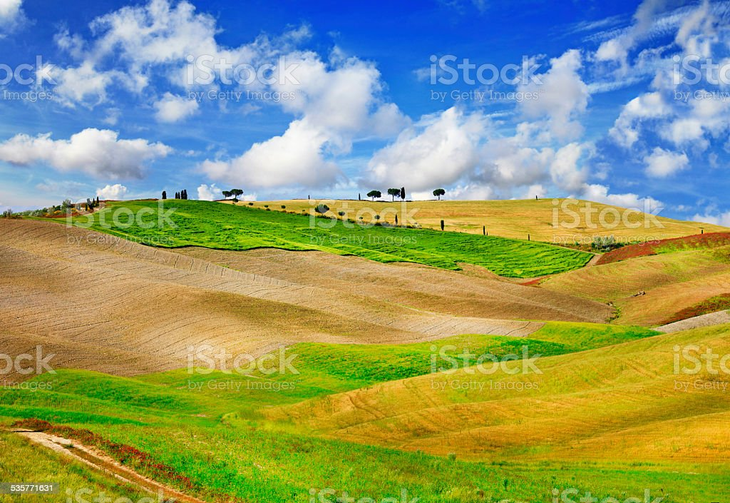Val d' Orcia,Italy. stock photo