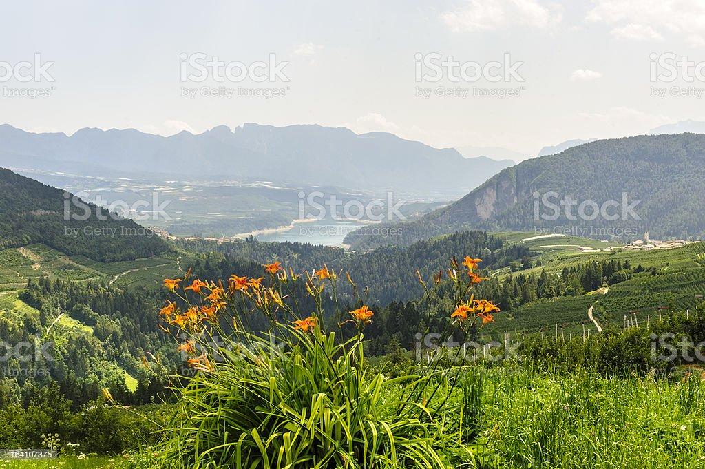 Val di Non (Trento) royalty-free stock photo