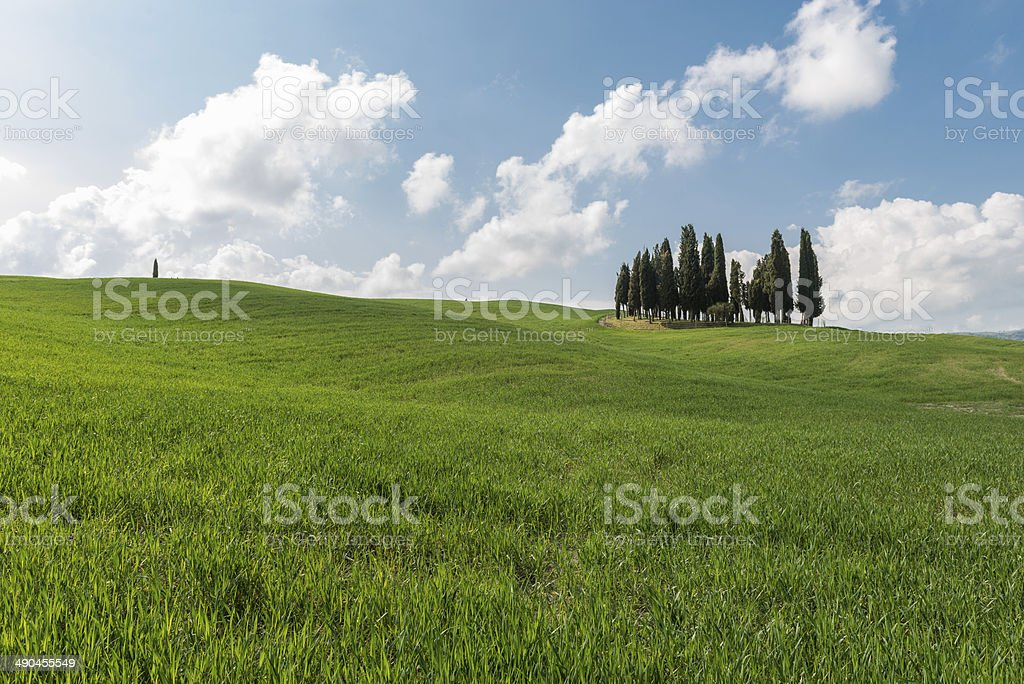 Val d'Orcia in Tuscany stock photo