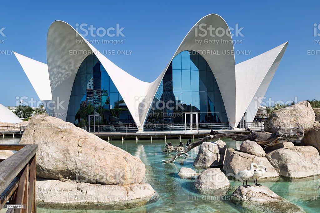 Valencia L'Oceanographic Center. The Aquarium. stock photo