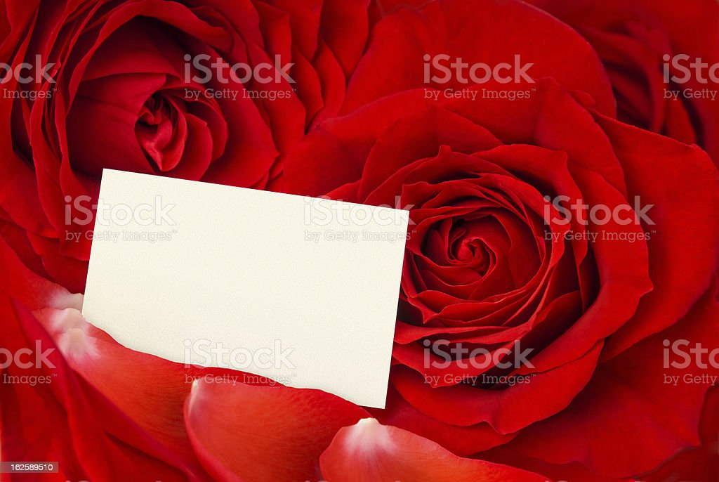 Valentine card amidst red roses and petals royalty-free stock photo