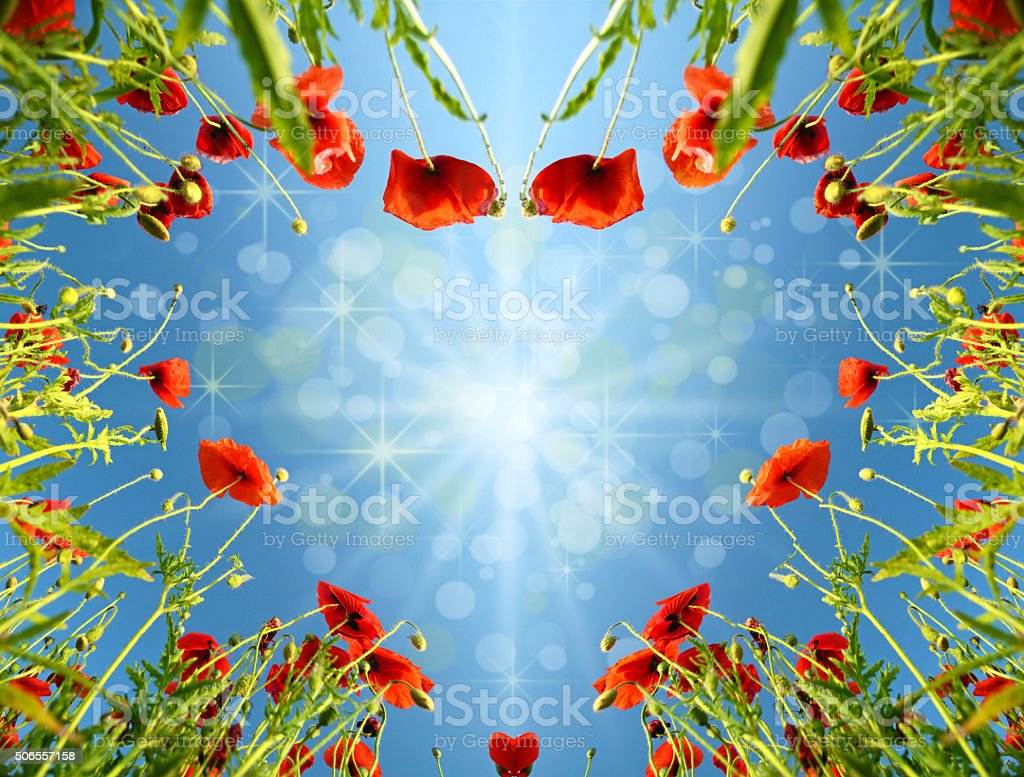 Valentine card as heart with poppies in sun`s glow stock photo