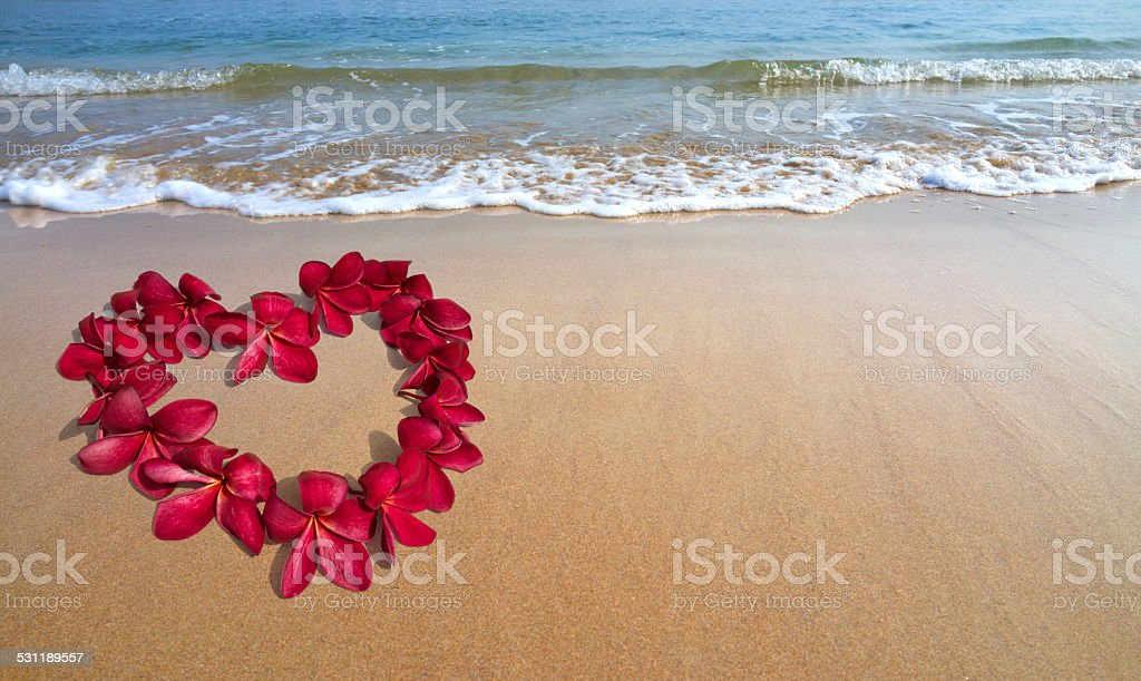 Valentine in the beach sand with heart shape red Frangipani stock photo