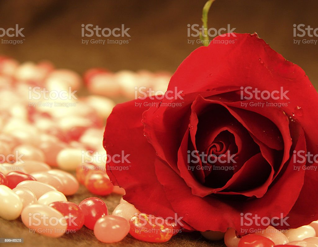 valentine rose and jelly beans royalty-free stock photo