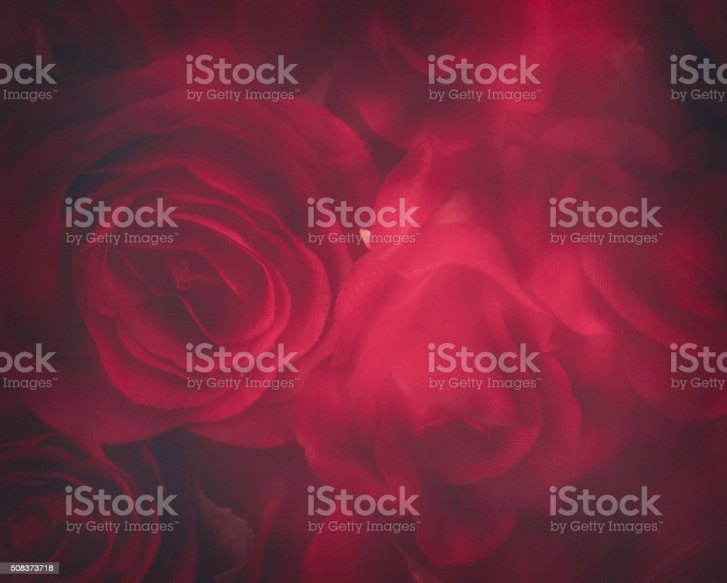 Valentine's Day background of soft blurry red roses stock photo