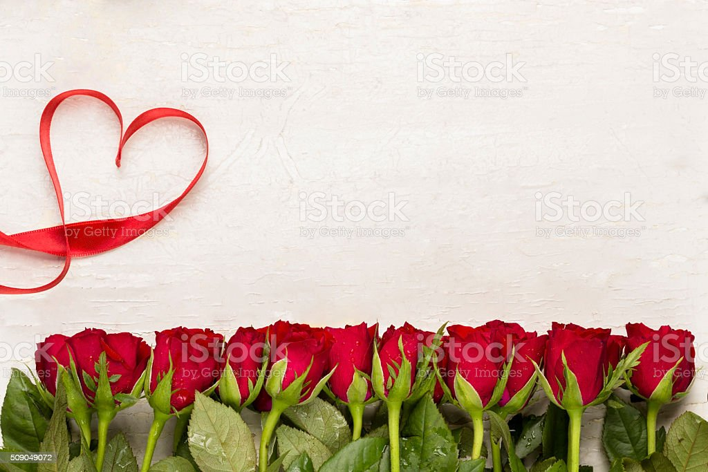 Valentines day card. Valentines day background.Red roses on white background.Happy Mother's Day. stock photo