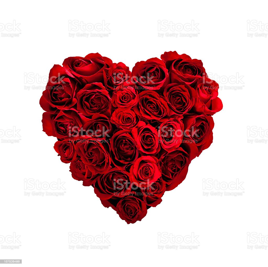 Valentines Day Rose Heart stock photo