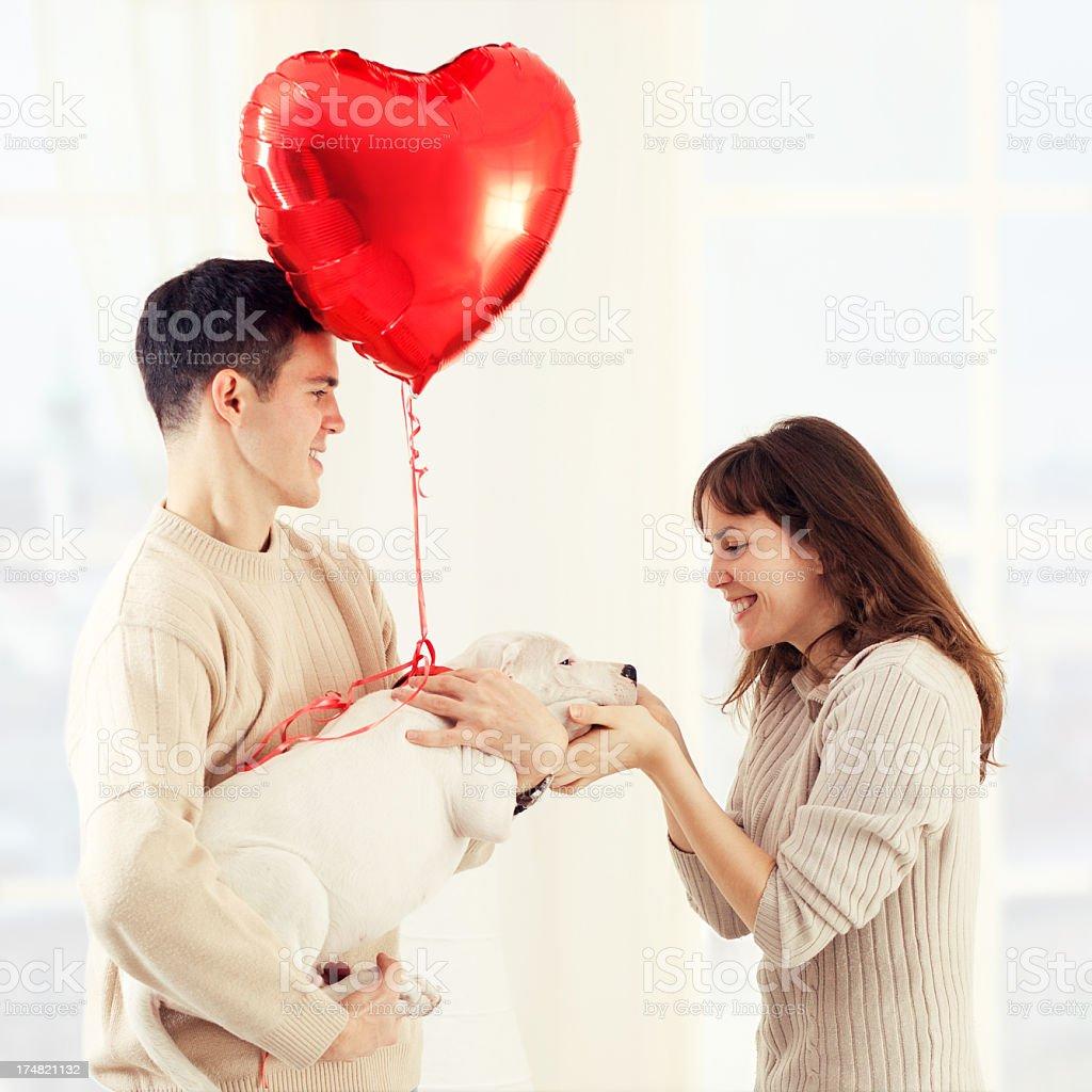 Valentine's Day Surprise stock photo
