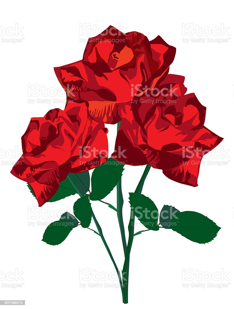 Valentines Day Sweet Red Roses. Vector Illustration stock photo