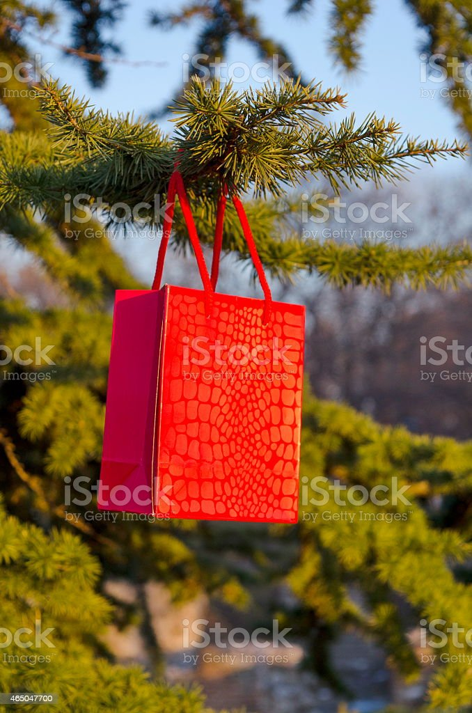 Valentine's gift on a fir tree royalty-free stock photo
