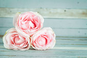 Valentine's pink rose sweet color old wood background