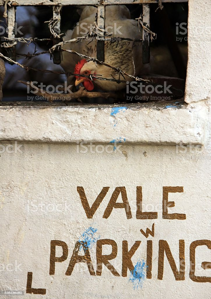 valet parking and hen stock photo