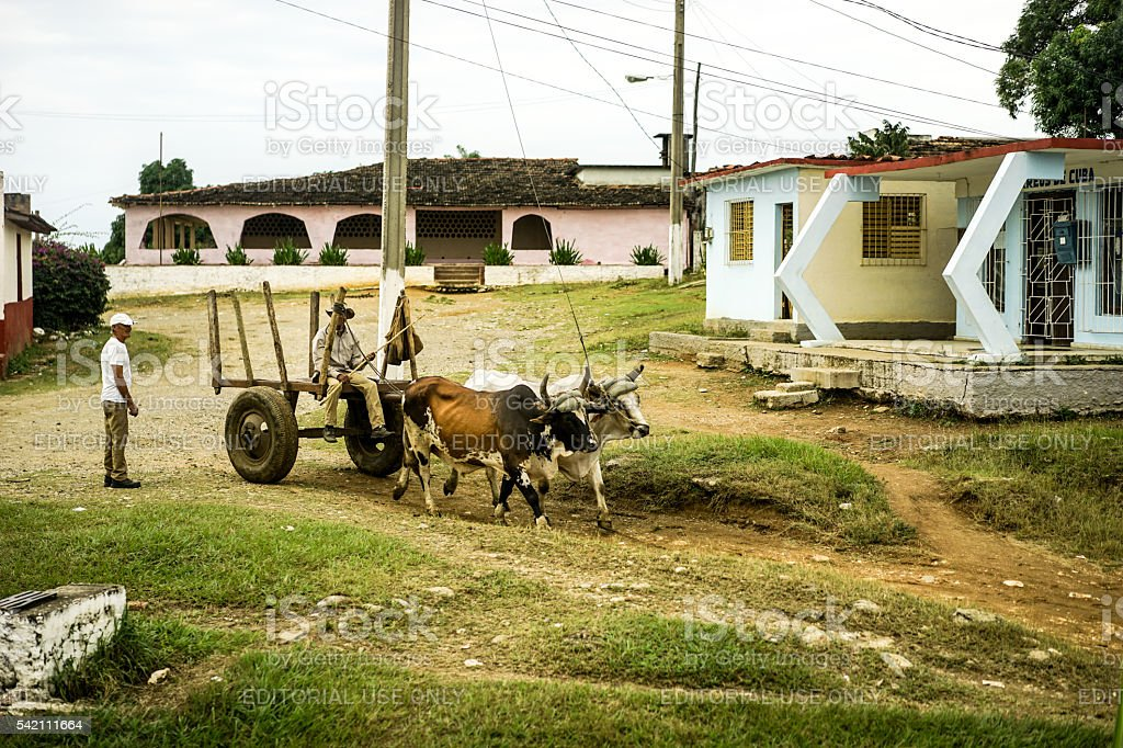 Valle de los ingenios people and oxcart stock photo