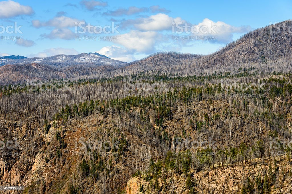 Valles Caldera National Preserve stock photo