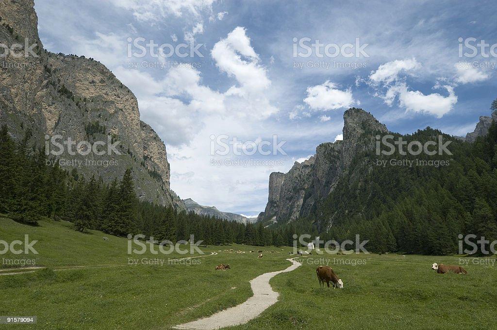 Valley Alto Adige stock photo