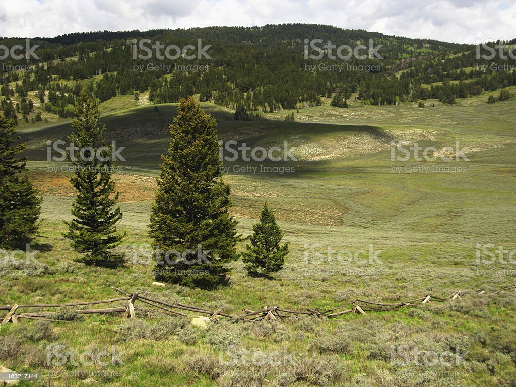 Valley Field In Wyoming royalty-free stock photo