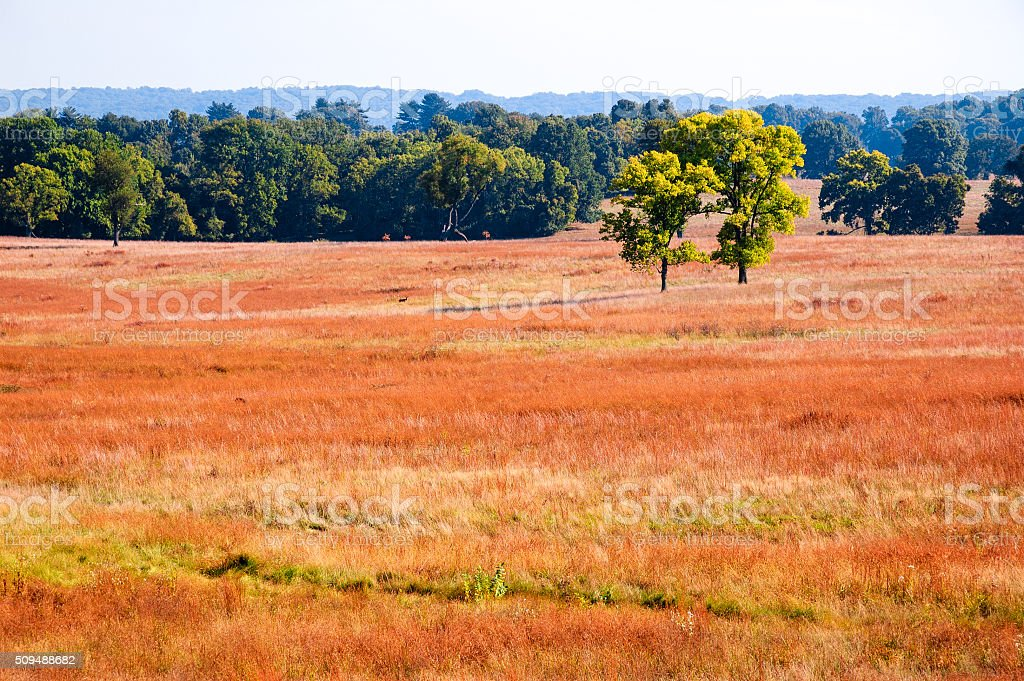 Valley Forge National Historical Park stock photo