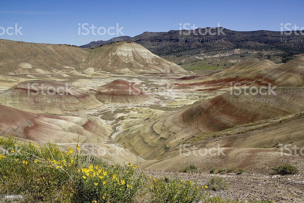 Valley in the Painted Hills stock photo