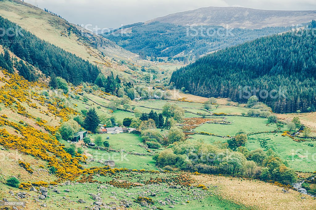Valley in Wicklow Mountains, Ireland stock photo