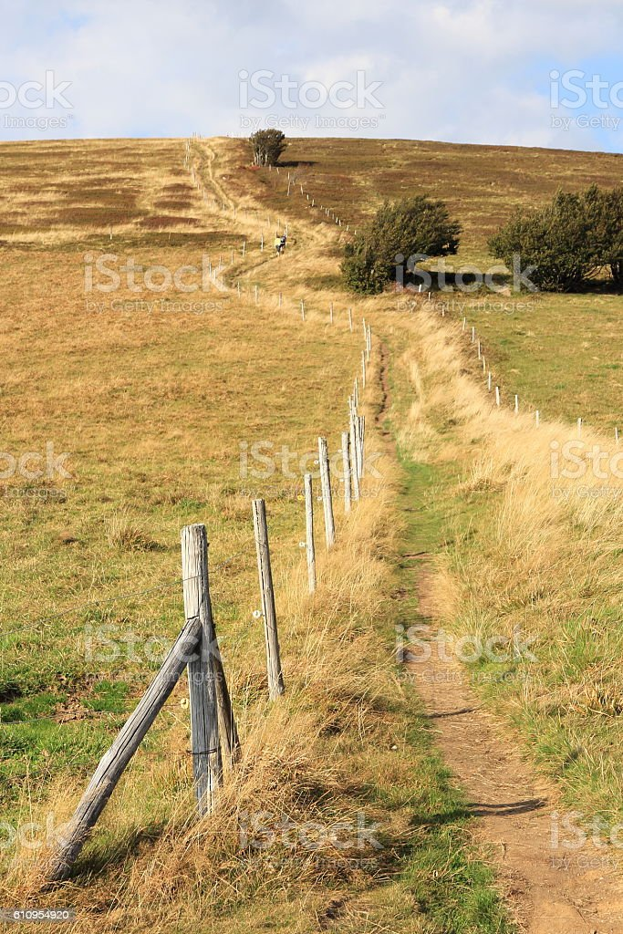 Valley of Munster in Alsace stock photo