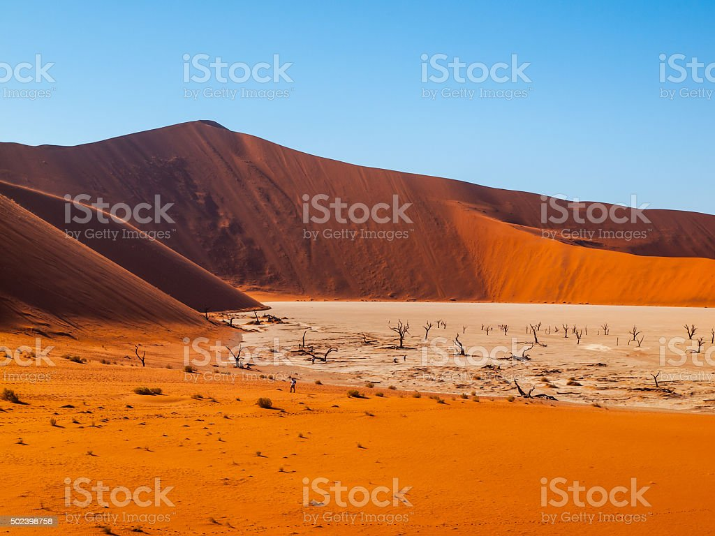 Valley of the Death in namibian Sossusvlei stock photo