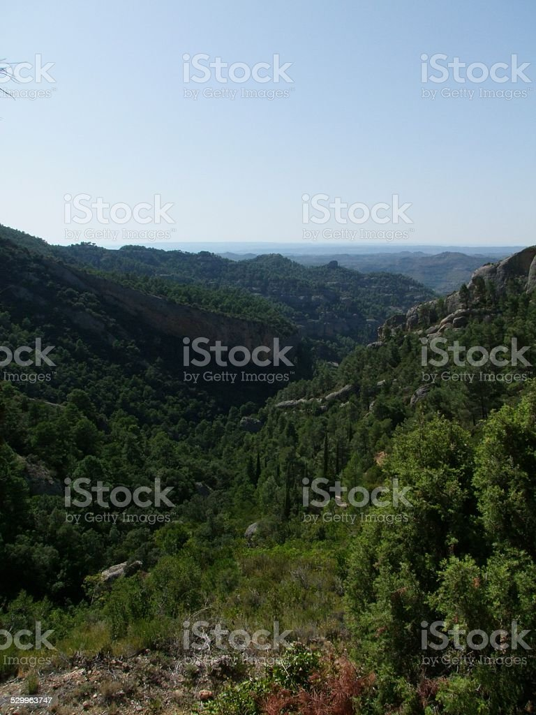 Valley foto royalty-free