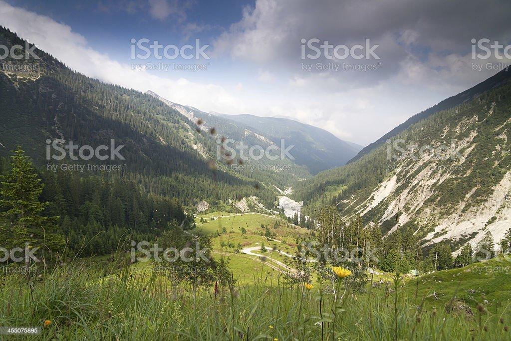valley Schwarzwasser royalty-free stock photo