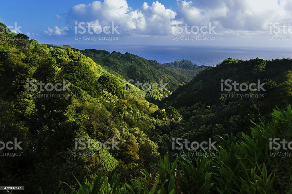 Valley view on The Road to Hana, Maui, Hawaii, USA stock photo