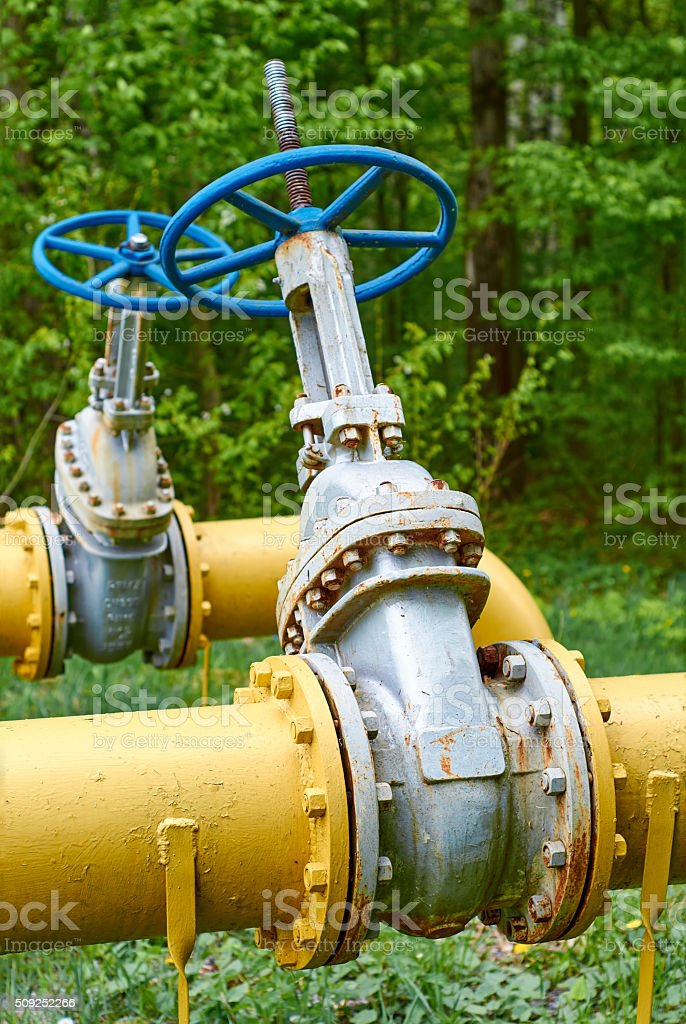 Valve on the gas pipe on the background of forest stock photo