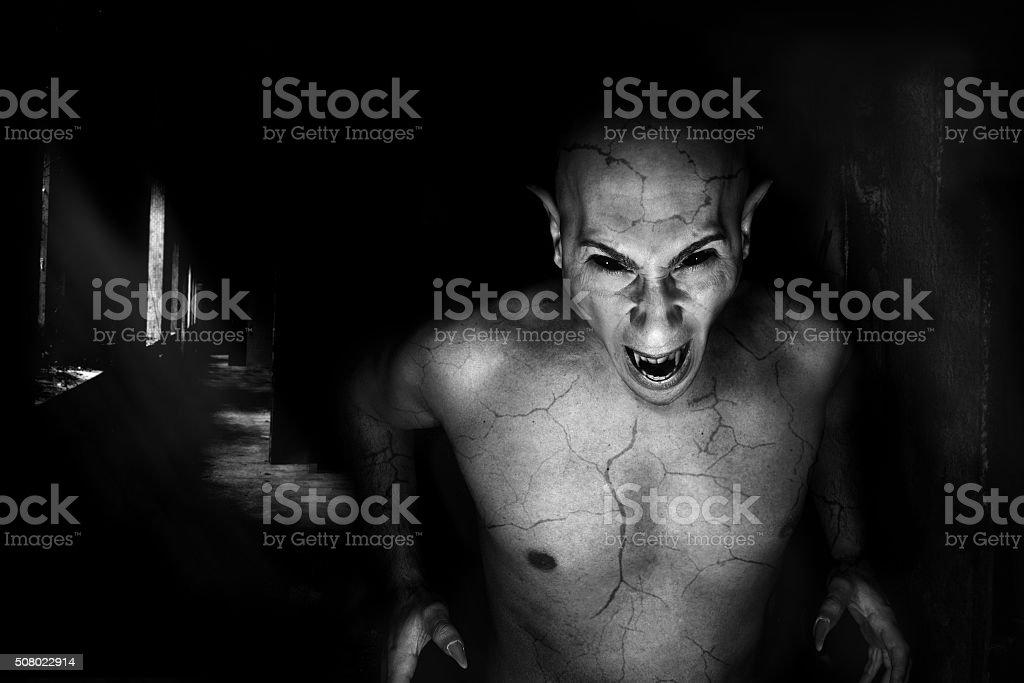 vampire portrait stock photo